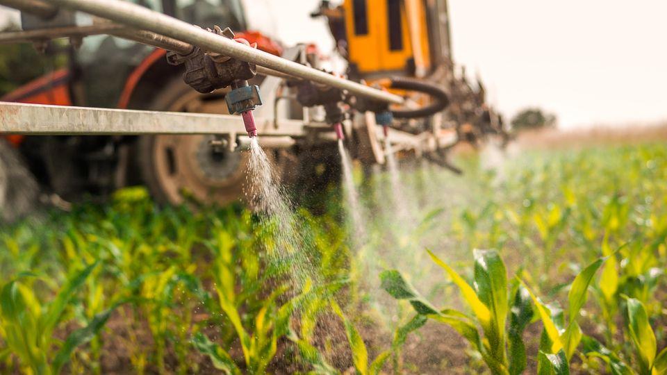In Deutschland ist jedes vierte Pestizid, das im Einsatz ist, hochgiftig
