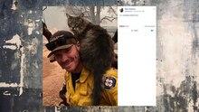 Kalifornien: Feuerwehrmann rettet Katze vor Waldbränden das Leben