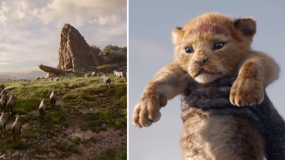 """Erster Trailer: """"König der Löwen"""" – So sieht die Neuverfilmung des Klassikers aus"""