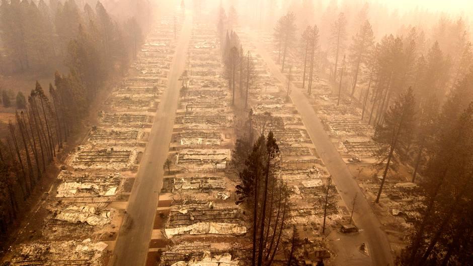 In der Kleinstadt Paradise in Kalifornien wurden mehr als 13.600 Häuser zerstört - viele Bäume blieben dagegen stehen