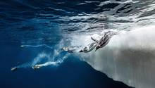 Antarktis: Pinguin-Kolonien, Robben, Ewiges Eis