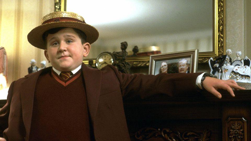Harry Melling als Dudley Dursley