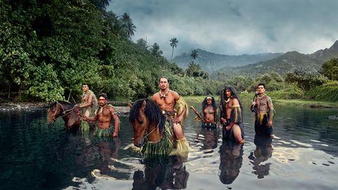 Campbell Island: Das Rätsel um die Sitka-Fichte: Wie ein Baum es ins Guiness-Buch der Rekorde schaffte