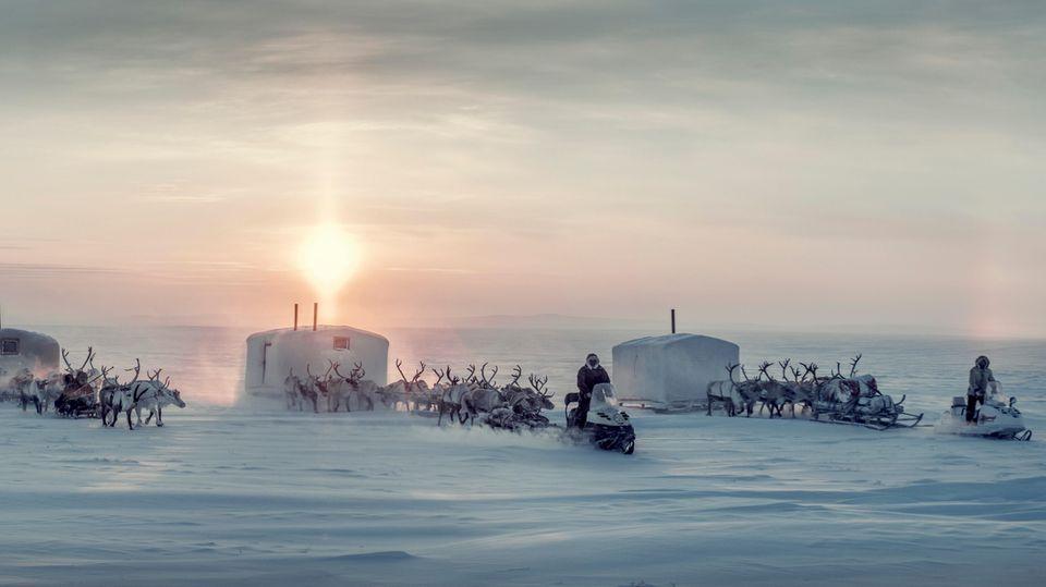 Kalte Heimat: Zwischen Birkenwäldern und Bären: Leben in der Abgeschiedenheit der sibirischen Taiga