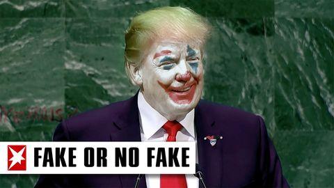 Echte Clowns stinksauer: Sogar Stephen King hat die Nase voll von der Horrorclown-Hysterie