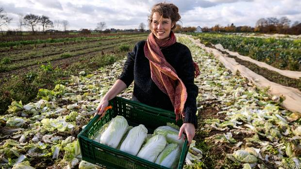 Nicole Klaski holt Gemüse vom Feld