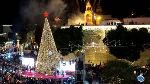 Zeitraffer-Video: Weihnachtsbaum in Bethlehem strahlt in vollem Glanz