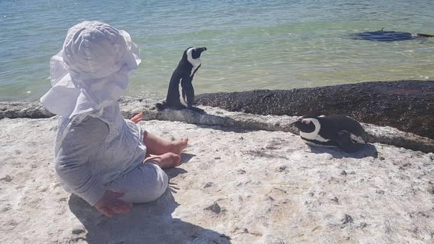 Am Boulders Beach in Simon's Town: Tilda beobachtet Pinguine