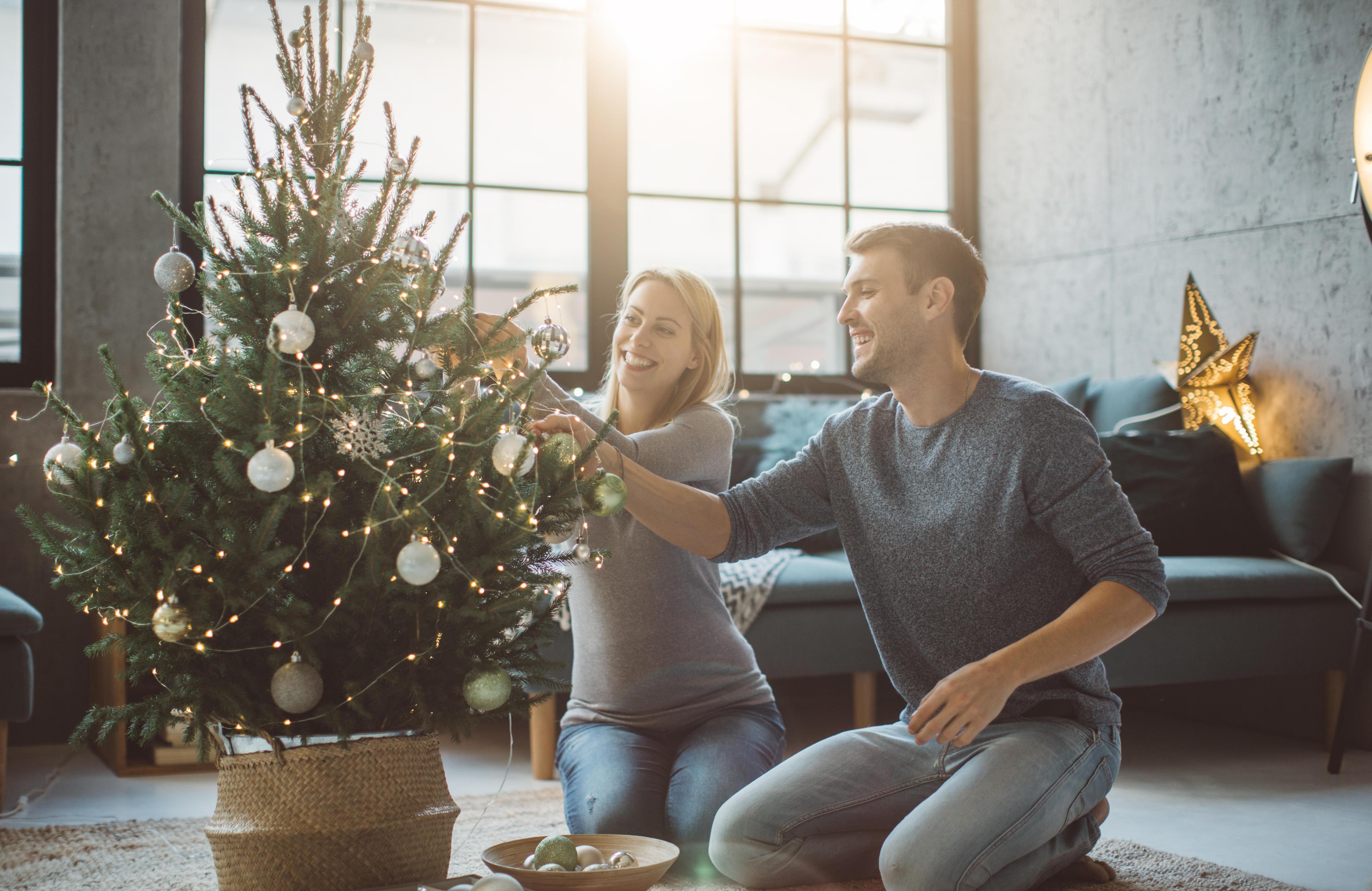 Künstlicher Tannenbaum Im Topf.Weihnachtsbaum Ob Mieten Bio Oder Fair Trade Nachhaltigkeit Geht