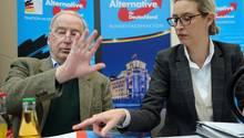Alternative für Deutschland: Neun überraschende Fakten