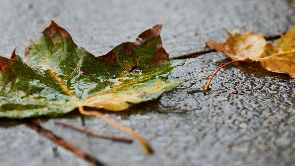 wetter in deutschland freitag 7.12.