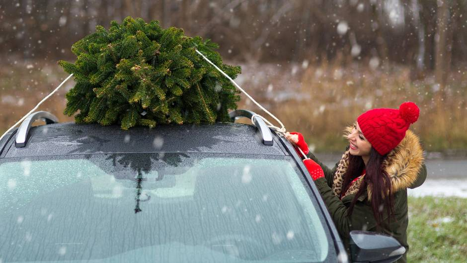 Auto Weihnachtsbaum.Weihnachtsbaum Sicher Transportieren Im Kofferraum Oder Auf Dem
