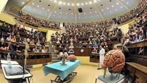 Reformen für das Medizinstudium