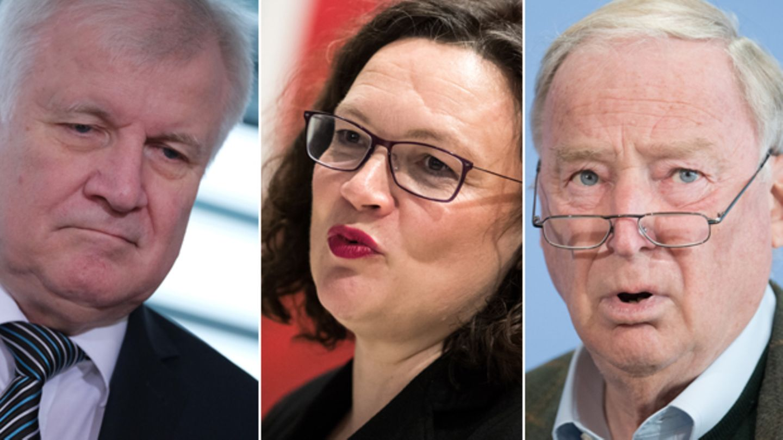 Bundesinnenminister und CSU-Chef Horst Seehofer, SPD-VorsitzendeAndrea Nahles,AfD-Chef Alexander Gauland