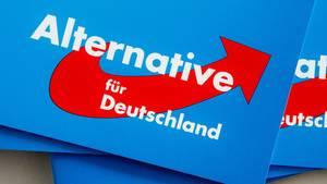 Broschüren mit dem Logo der Alternative für Deutschland liegen auf einem Stapel