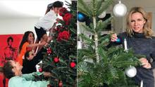 Weihnachten bei den Promis