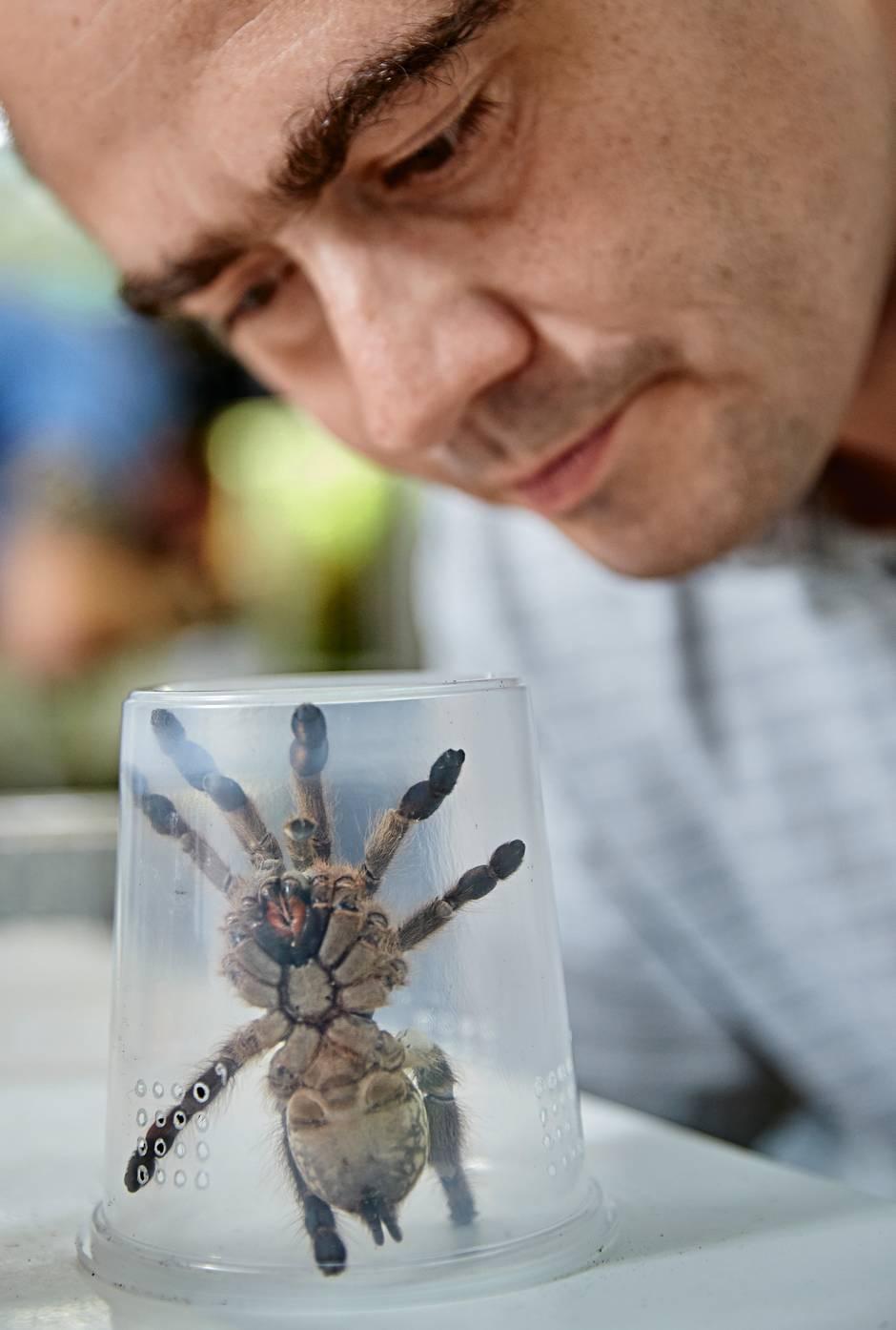 Tiergift-Forschung: Wie viel Heilkraft verbirgt sich der Natur?