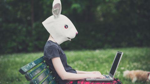 Damit am PC nicht der Durchblick fehlt, wollen die Hacker desChaos Computer Clubs das Wissen um Computersicherheit verbessern – ihre Fähigkeiten bekam nun ein Betrüger zu spüren (Symbolbild)