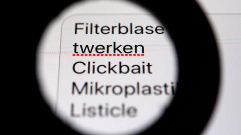 Das Institut für Deutsche Sprache sammelt neue Wortschöpfungen.