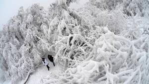 Schnee und Eisregen