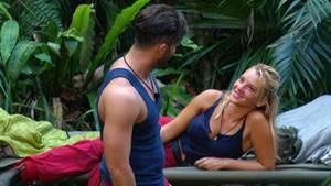 Die sexuelle Spannung zwischen Domenico und Evelyn war bereits an Tag 1 im Dschungel nur schwer zu leugnen