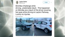 Unfall bei Bird Box Challenge