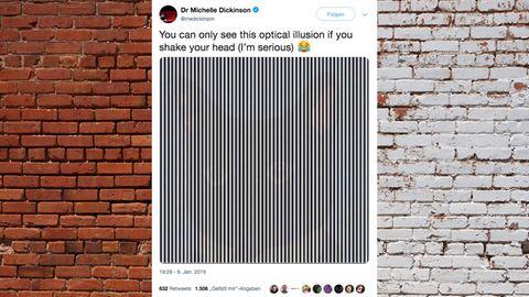 Twitter-Community ist verwirrt: Bei dieser optischen Täuschung soll man sich zum Deppen machen – aber es funktioniert!