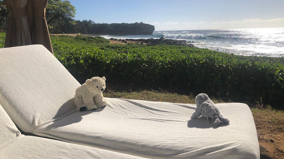Die Stofftieren liegen auf einer Strandliege mit Meerblick