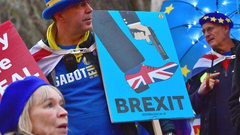 Demonstranten vor dem Parlament in London