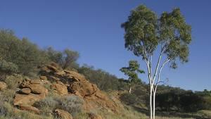 Leiche von vermisster deutscher Urlauberin in Australien entdeckt