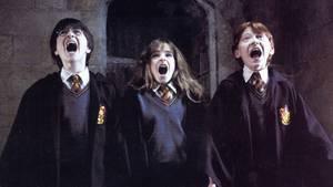 """Die besten """"Harry Potter""""-Hörbücher"""