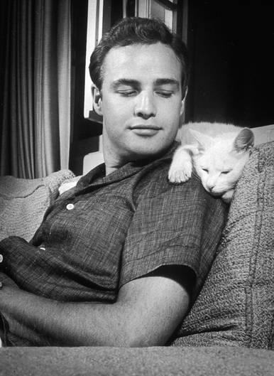 Dösen auf der Schulter von Marlon Brando; aufgenommen 1954 in der Villa des Schauspielers in Los Angeles.