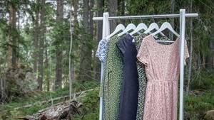 Kleider an Kleiderstange in Wald
