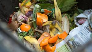 Die Studentinnenwollten mit der Aktion grundsätzlich auf Lebensmittelverschwendung aufmerksam machen (Symbolbild)