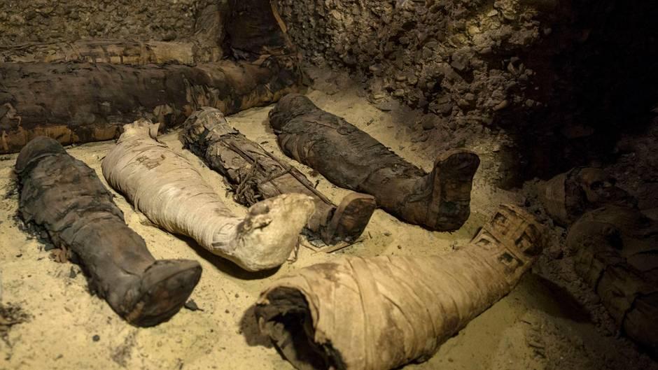 news grabkammer mit etwa 40 mumien in gypten entdeckt. Black Bedroom Furniture Sets. Home Design Ideas
