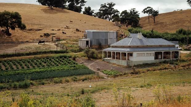Australien: Landschaft mit Farmhaus und Viehweide in South Australia.