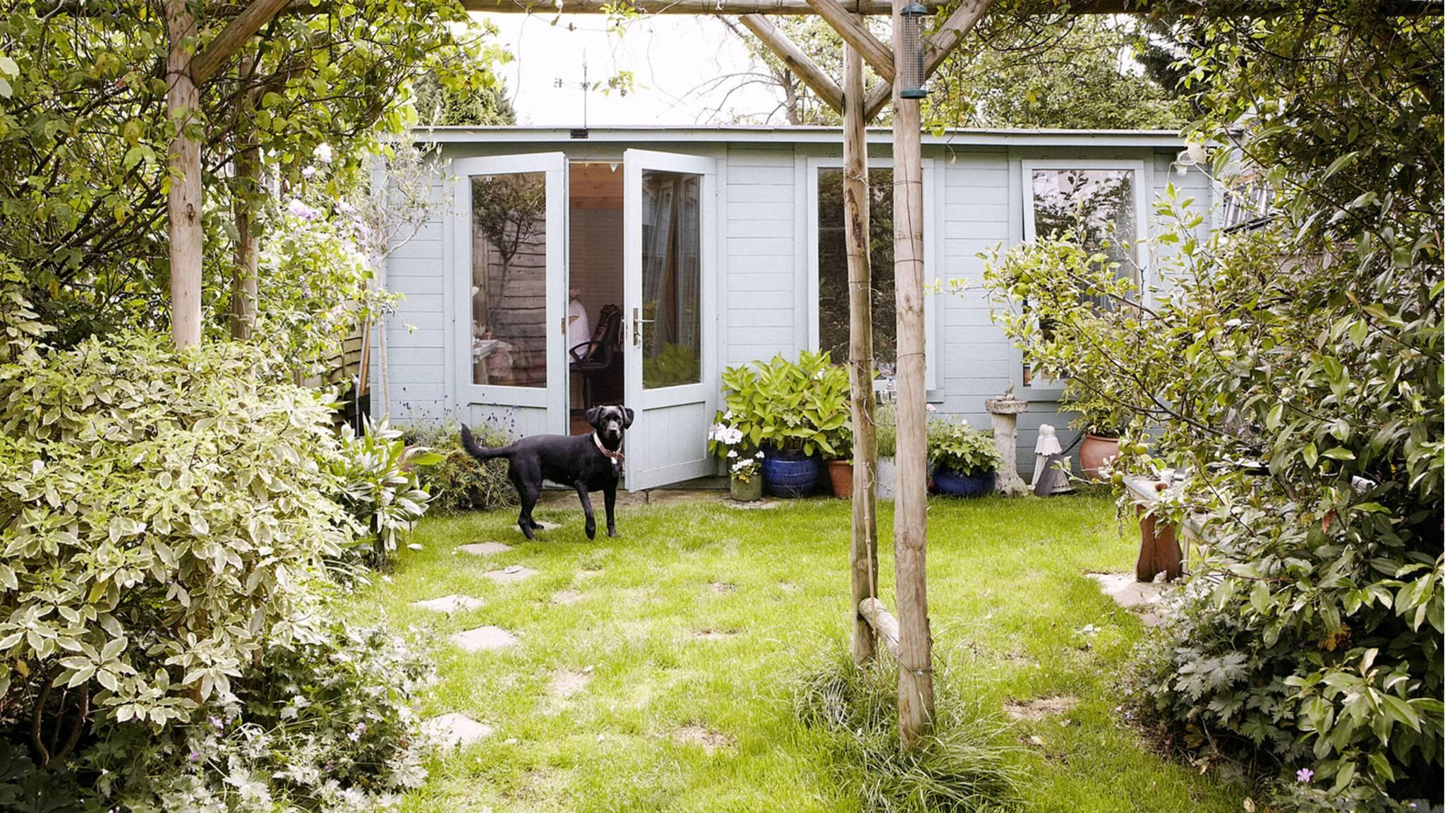 Gift Im Eigenen Garten Diese Gefahren Lauern Fur Den Hund Stern De