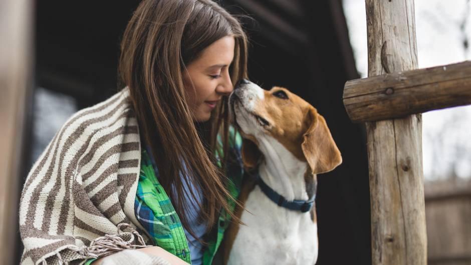 Endlich ein Team: So kriegen Sie die Aufmerksamkeit Ihres Hundes