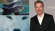 Dirk Steffens präsentiert die besten Naturfilme beim Greenscreen-Festival.