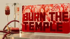 """Sieht aus wie Blut, ist auch Blut: Die Ausstellung """"Young Blood"""" von Andrei Molodkin findet in eher klinischer Atmosphäre statt"""