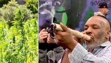 Mike Tyson raucht einenriesigen Joint.
