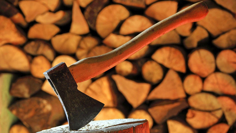 Eine Axt steckt in einem Holzblock. Mit solch einem Werkzeug hat in Sofia ein junger Mann seine Familie ausgelöscht