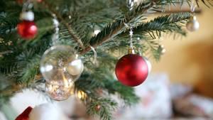 nachrichten deutschland - weihnachtsbaum - leiche