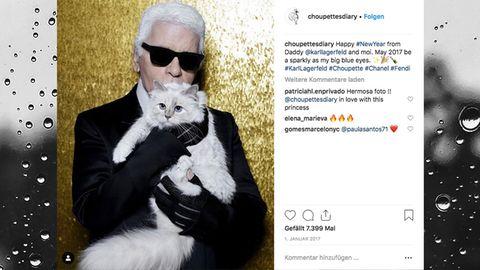Karl Lagerfeld und Choupette