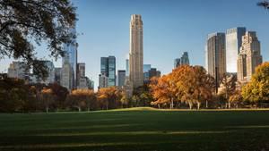 In Zukunft wirft220 Central Park South seinen Schatten auf den Park.
