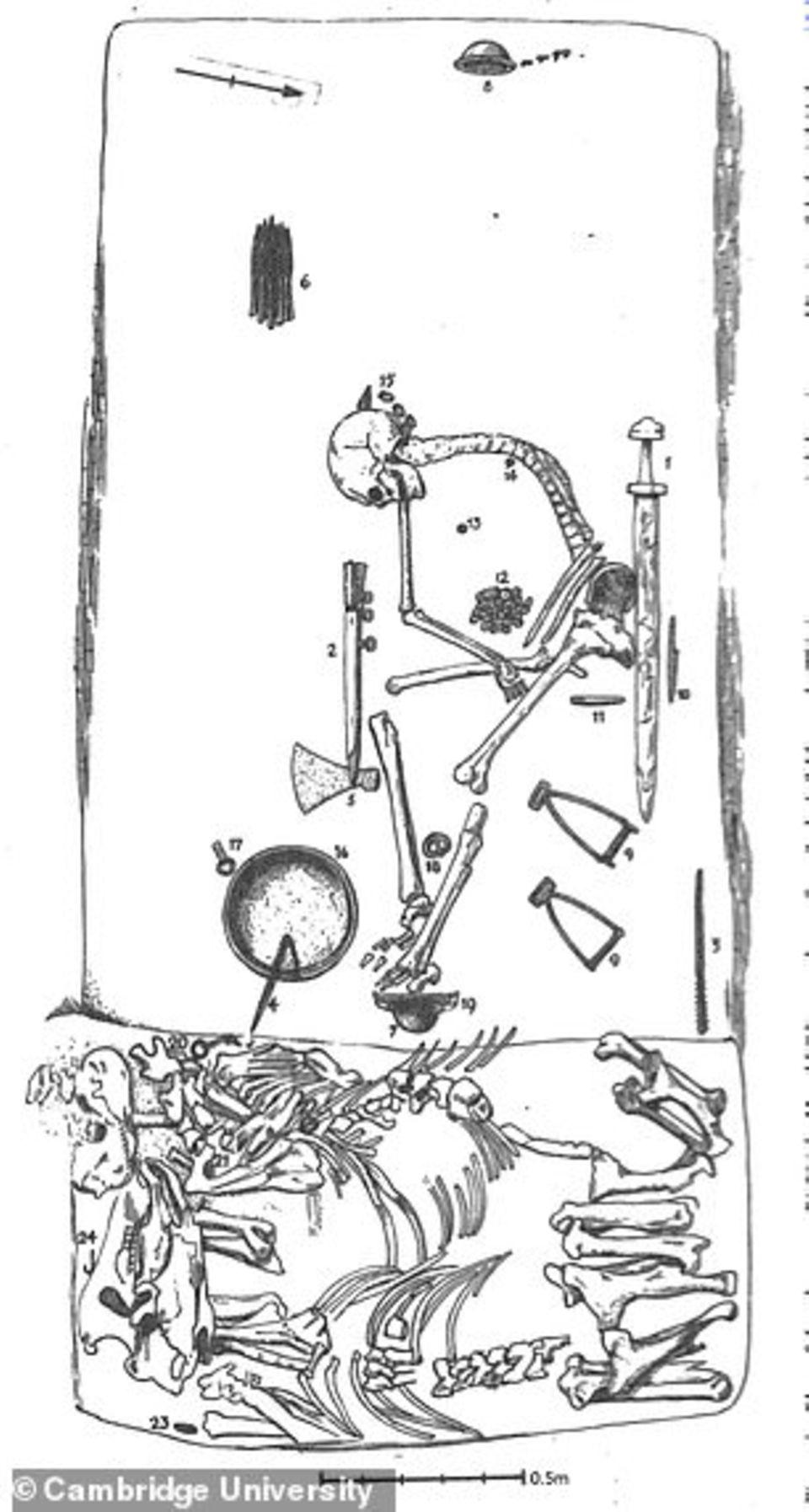 Skelett untersucht: Begraben mit Schwert und Pfeilen – endgültiger Beweis für Wikinger-Kriegerinnen