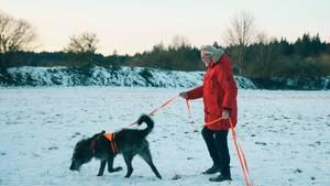 Immer der Nase nach: Archäologiehunde leisten Unglaubliches – dahinter steckt harte Arbeit
