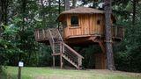 Campingplatz Wernerwald