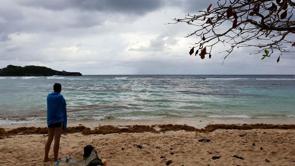 Karibik: In dieser Bucht vor Jamaica verlor er irgendwo seinen Ehering. Und so fand er ihn wieder