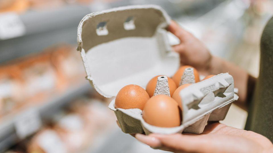 Verbraucherzentrale warnt: Gefährliche Zweitverwertung: Warum Eierkartons sofort in den Müll gehören